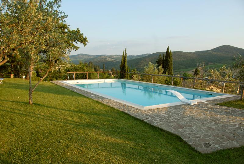 Family winery in the Chianti Classico area with B&B 'Apt PILU', vakantiewoning in Greve in Chianti