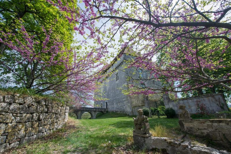Chateau de Goudourville, dans le Sud Ouest, holiday rental in Saint-Arroumex