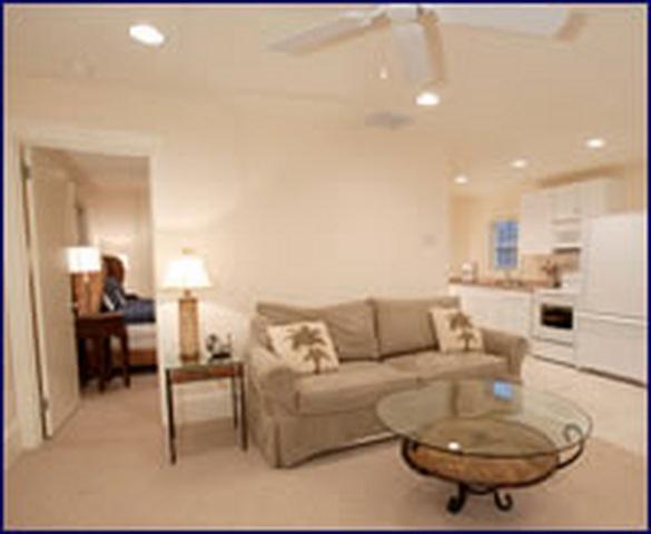 Living Room - 30 B Delaware Ave