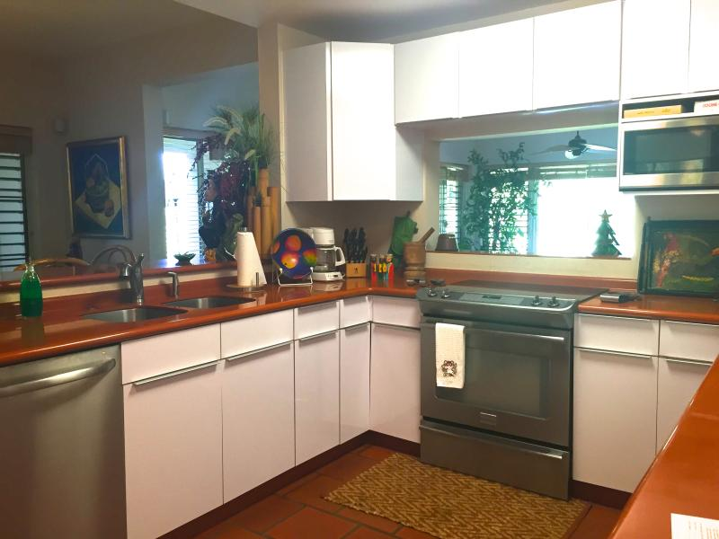 Contemporary appliances in the kitchen island
