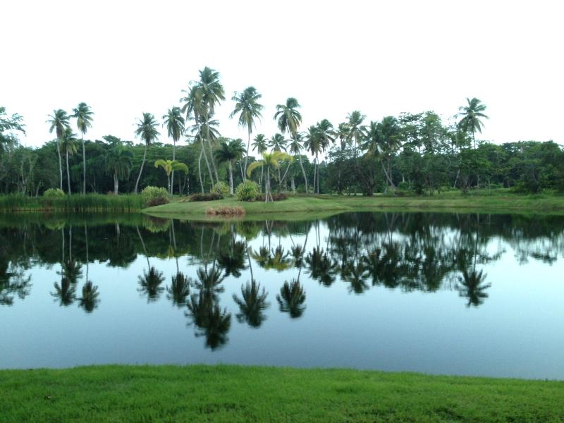 Three championship golf courses on property available for your pleasure!