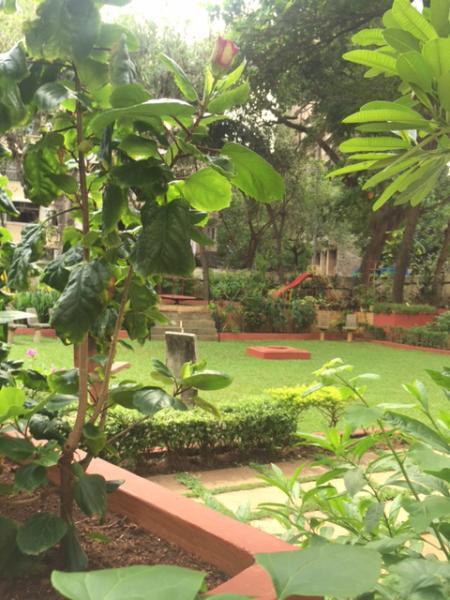 The garden downstairs