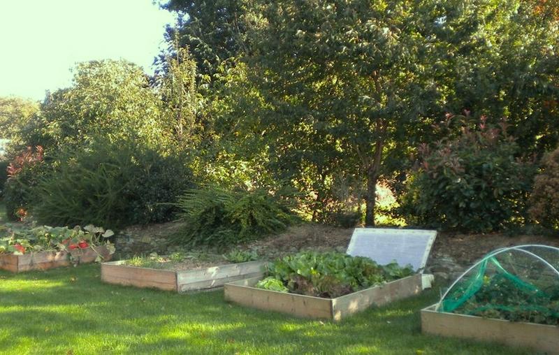 notre petit jardin en carré nous vous ferons profiter de nos légumes