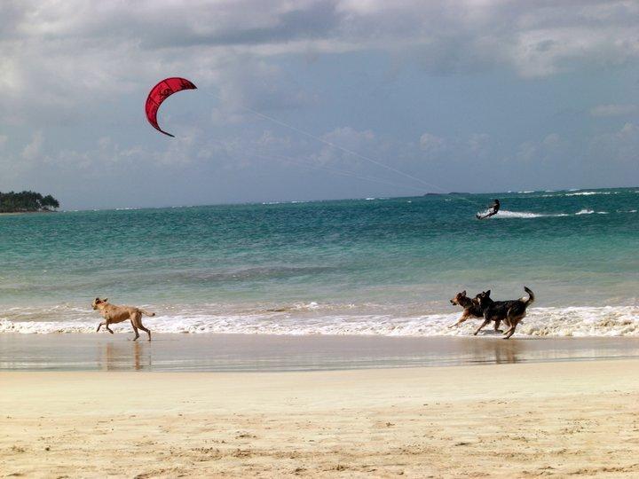 Kitesurf Punta Popy