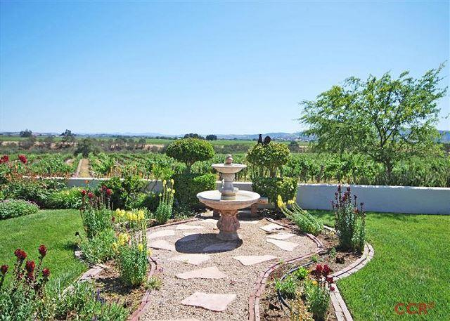 Gracious Elegance in Gorgeous Vineyard Setting, holiday rental in Paso Robles
