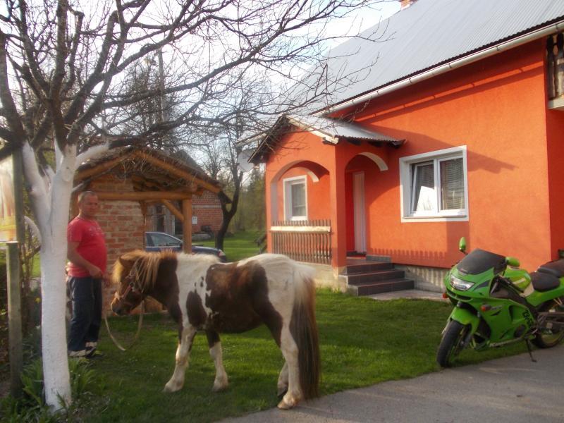 Matovina, holiday rental in Sertic Poljana