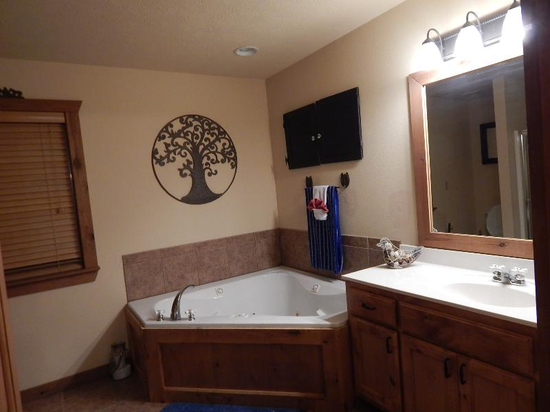 Master Bedroom Suite with Whirlpool jetted tub on the upper level
