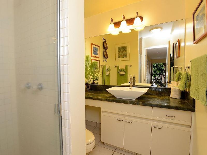 Second bathroom has Verde Vecchio quartzite countertop and shower