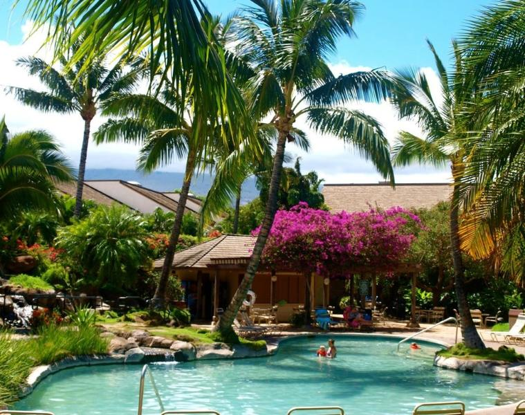 Tropical upper pool has waterfall, sparkling sand-bottom jacuzzi and grills.