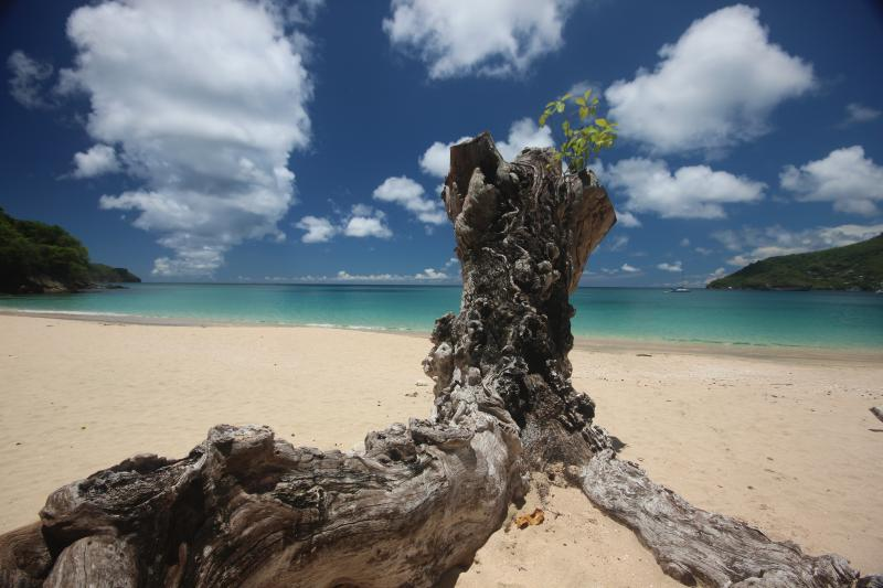 Princess Margaret Beach. Unspoilt, pristine with crystal clear water