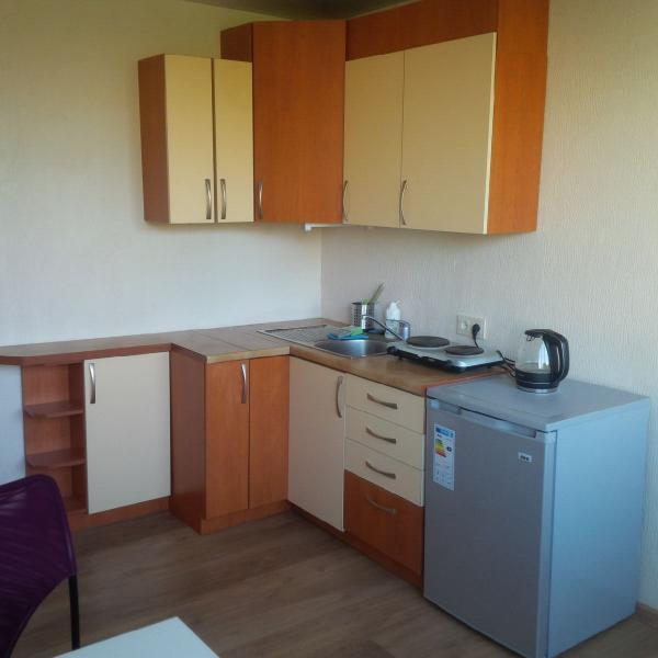 Friendly Studio apartment, holiday rental in Druskininkai