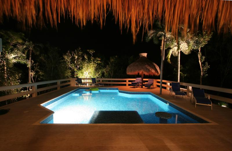 Enjoy the pool day or night!