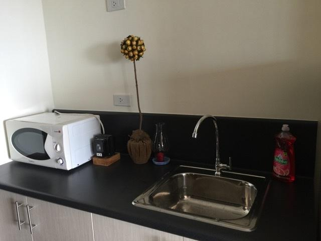 Microwave, and modern appliances provide comfort of modern living, in a cozy compact Unit T16
