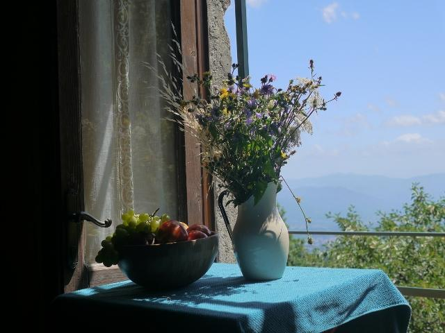 Culterra Magica art retreat in Northern Tuscany, holiday rental in Vergemoli