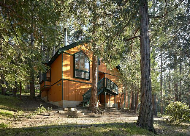 Hidden Oaks Cabin with Stunning Views, holiday rental in Idyllwild