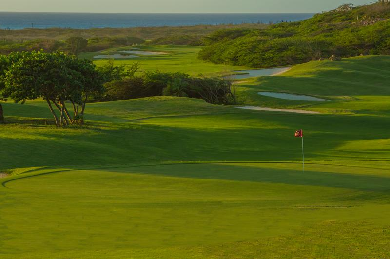 2 major golf courses nearby (Divi Village and Tierra Del Sol)