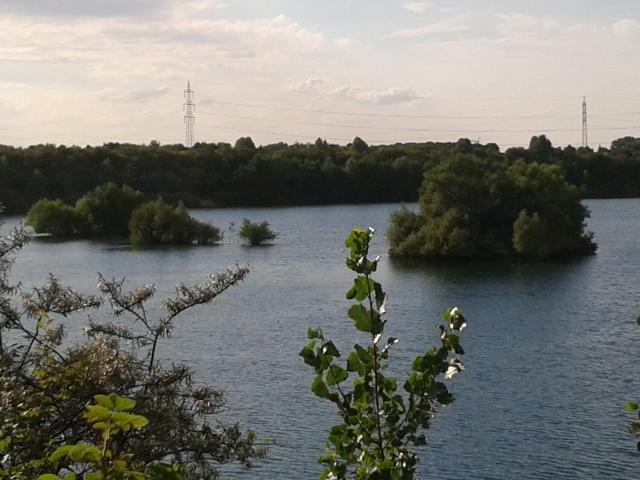 Île dans le Pescher See