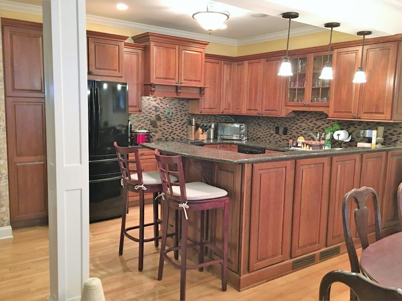 Kitchen area. Granite counters. Induction range. Dishwasher, microwave. Counter seating for 6