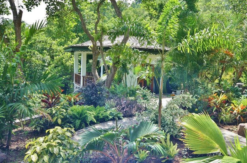 Palm Cottage as seen through the lush tropical gardens
