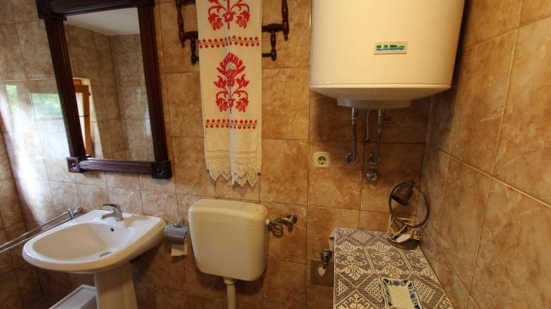 SA1(2+2): bathroom with toilet