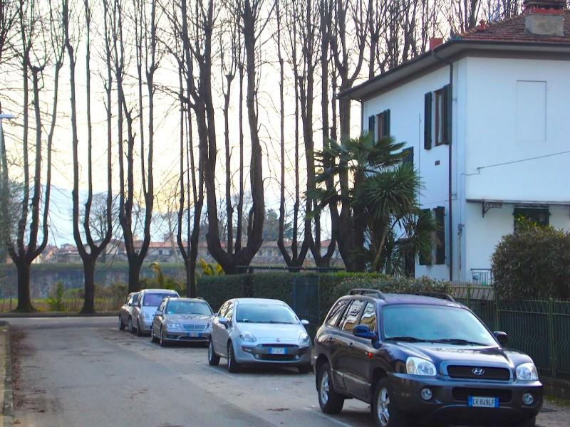 view on Lucca's walls from the street