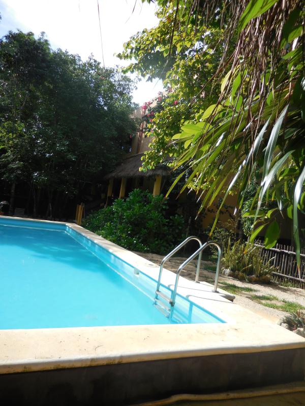 Swimming pool and villa