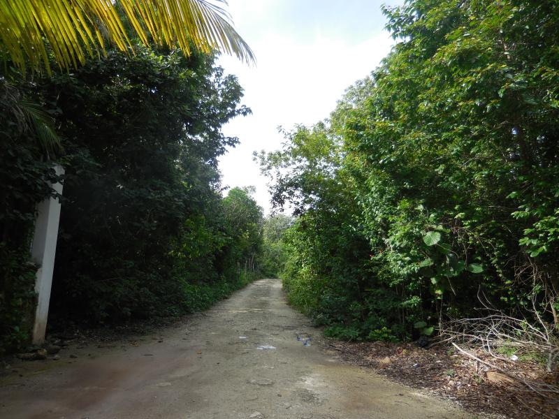 Road to property