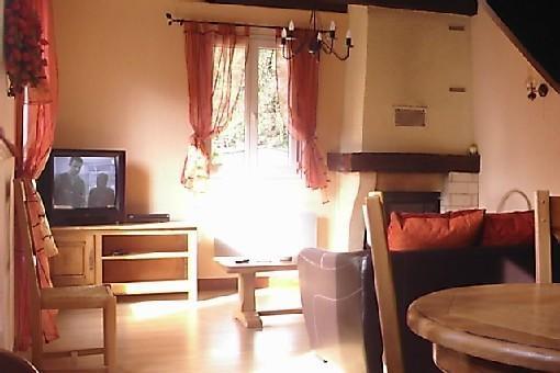 Salon avec cheminée à insert et récupérateur de chaleur