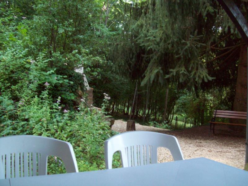 vue du sous bois depuis la terrasse couverte