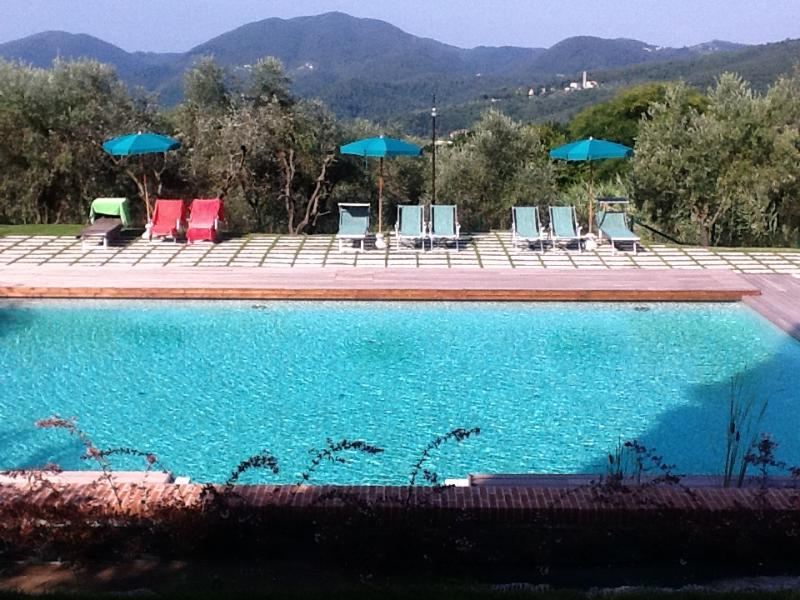 large (8 x14) swimming pool