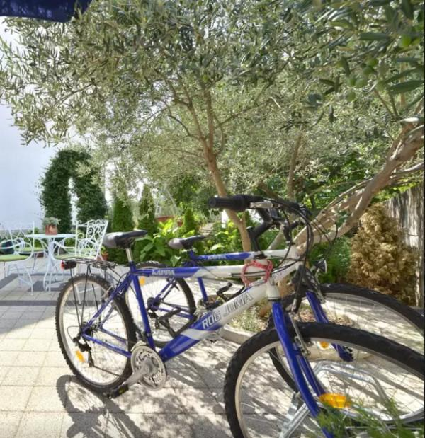 Go cycling for free!