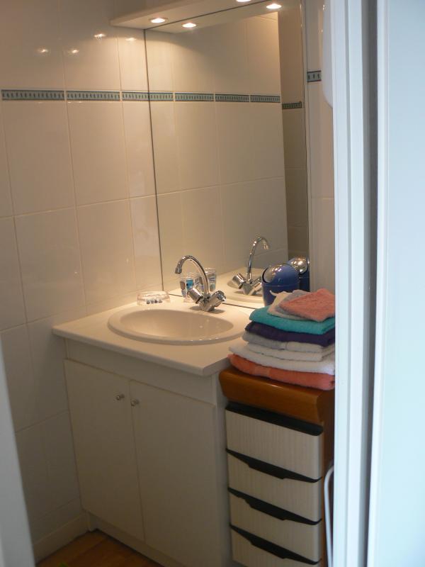 la salle de bains avec douche et wc séparés