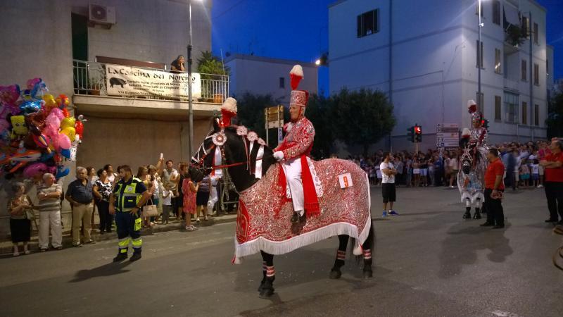 cavalli partecipanti alla 'cavalcata Storica' il 26 agosto