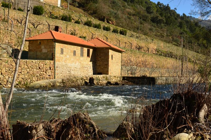 Quinta de Recião - Mill House, vacation rental in Viseu District