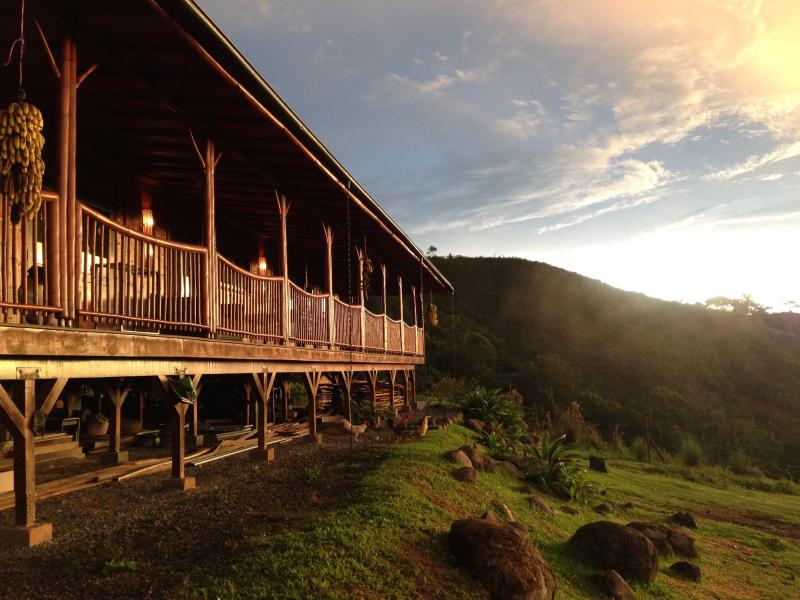 Lazy J Wildlife and Wellness Center, holiday rental in San Buena