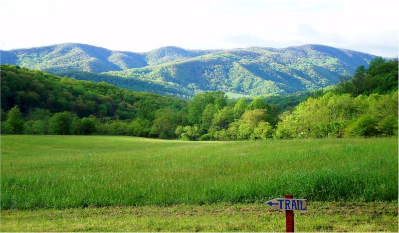 Compassionate Expressions Mtn Inn has one of the best mountain views in the Asheville area