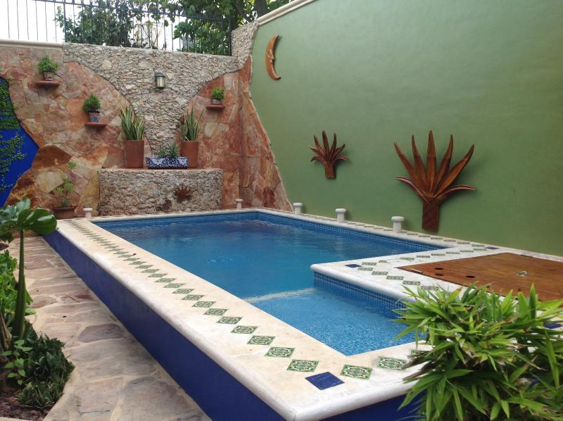Refreshing Filtered Plunge Pool
