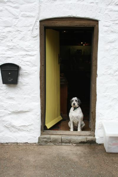 Pets welcome. We charge £5 per dog per night, to be paid on arrival.