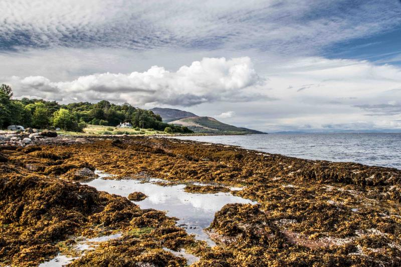 In the other direction there's the local shore towards Brodick