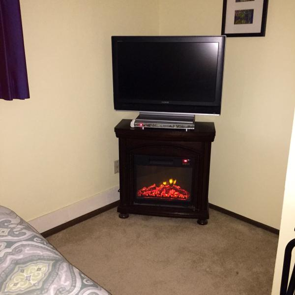 TV and fireplace in bedroom.