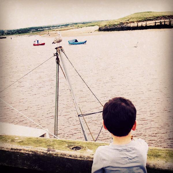 Amble harbourside