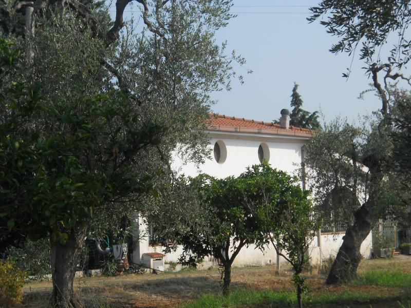 villa sara, holiday rental in Ferrandina