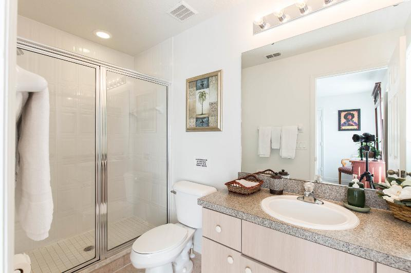 All the bathrooms like this one in the Hendrix Master suite have plenty of storage space.