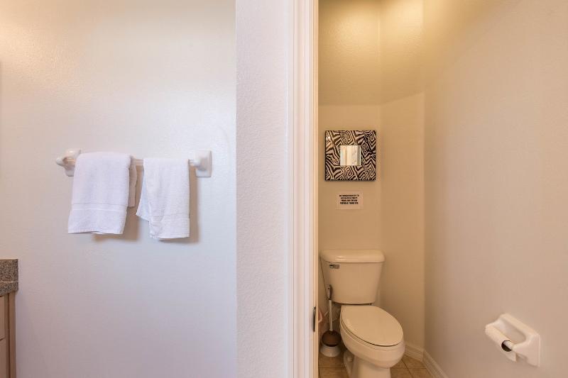 The separate restroom in the downstairs master bedroom en-suite.