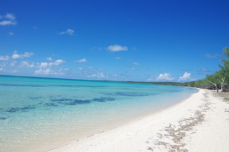 NEW Luxury beachfront villa! private beach&hot tub, location de vacances à Rock Sound