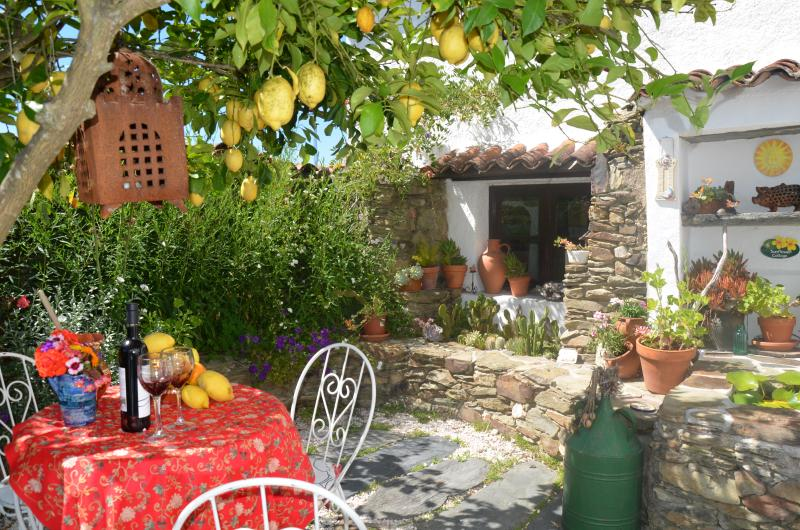 Sunflower Cottage, Private courtyard. Enjoy a relaxing drink in the shade of the Lemon Tree