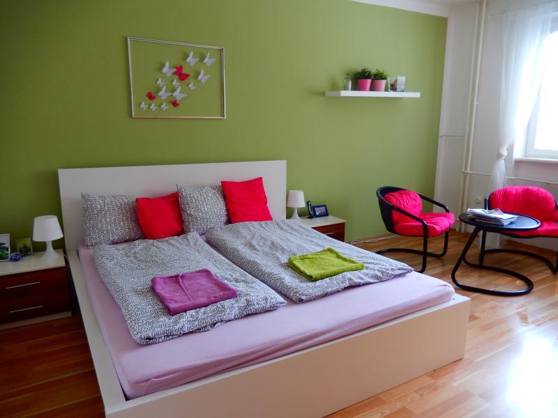 Quiet apartment close to the centre, location de vacances à Radonice