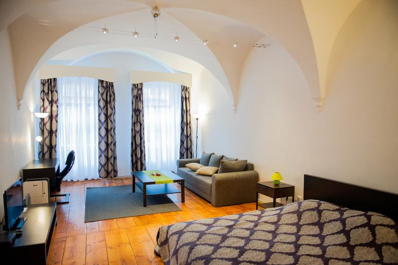 ARCADE STUDIO CLOSE TO THE GRAND SQUARE, vacation rental in Sibiu