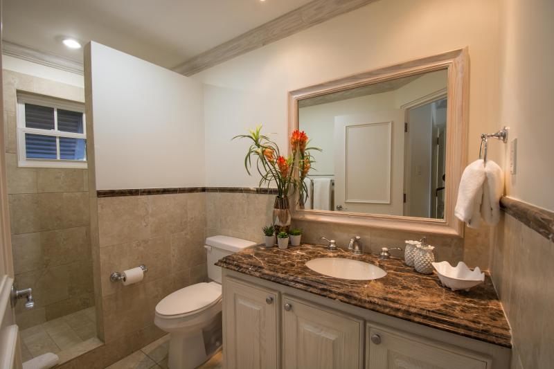 The en-suite to the Master bedroom. with walk-in shower and all facilities
