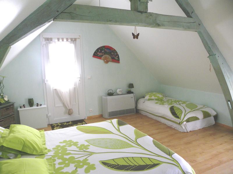 Chambres d'hôtes La Quèrière - les Bambous -, holiday rental in Mur-de-Sologne